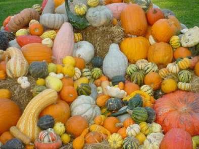 comidas para celebrar el halloween fiestas para adultos
